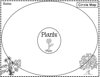 Writing about Plants: Thinking Maps