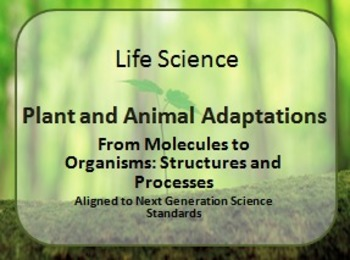Plant and Animal Adaptations PDF Presentation Next Generat