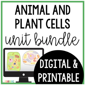 Plant and Animal Cells Unit {Lesson, Interactive Notes, As