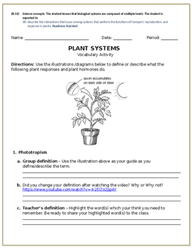 Plant hormones and responses vocabulary build up activity (10B)