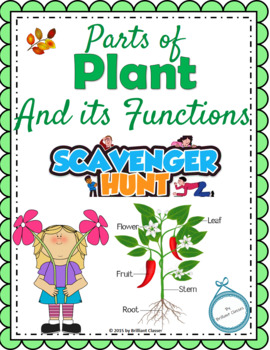 Plant and its Parts Scavenger Hunt - An Activity
