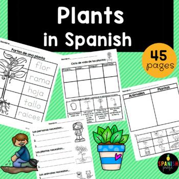 Plantas en español (Plants in Spanish)