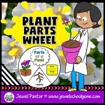 Plant Parts Craft Activities
