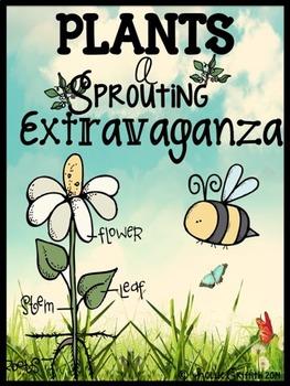 Plants: A Sprouting Extravaganza