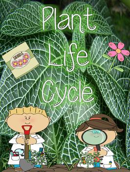 Plants Bundle Pack