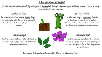 Plants Close Reading Passage SPANISH, 2 reading levels