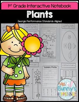 Plants Interactive Notebook (1st Grade)