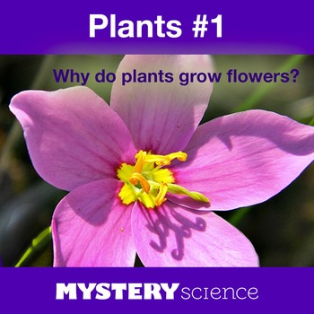 Plants NGSS:Flower Parts, Life Cycle ❤ BUNDLE:Activity, Re