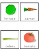 Plants Picture Word Banks and Picture Cards