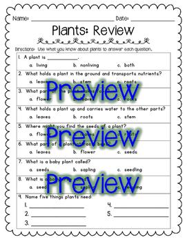 Plants Quiz