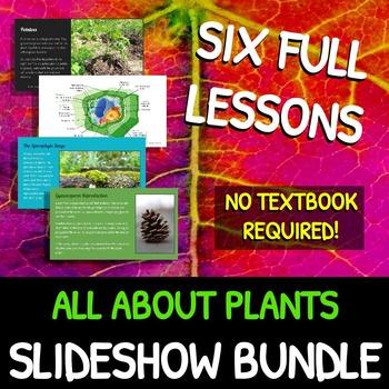 Plants: SLIDESHOW BUNDLE!