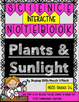 Plants & Sunlight- Science Interactive Journal