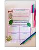 Plants & Sunlight- Science Interactive Notebook & Journal