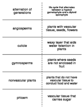 Plants Vocabulary Flash Cards for Middle School Science