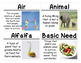 Plants and Animals Science Vocabulary Cards (FOSS Plants a