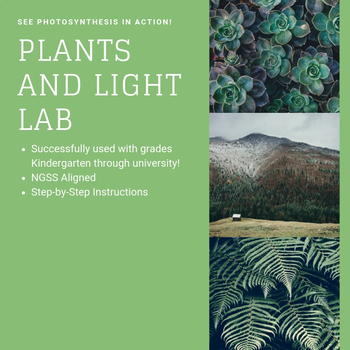 Plants and Light - Photosynthesis Lab