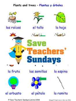 Plants and Trees in Spanish Worksheets, Games, Activities