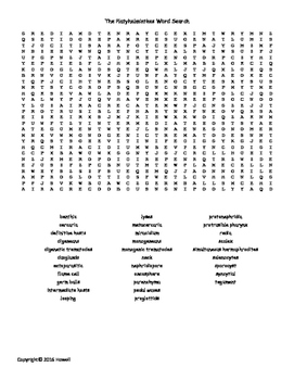 Platyhelminthes Vocabulary Word Search for Invertebrate Biology