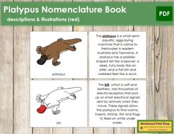Platypus Nomenclature Book (Red)