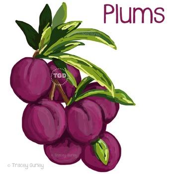 Plums - plum clip art, plum graphic, plum Printable Tracey