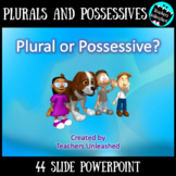 Plural or Possessive Noun PowerPoint Lesson