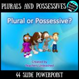 Plural or Possessive Noun