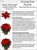 Poinsettia Activities: Poinsettia Facts Christmas Activity Packet