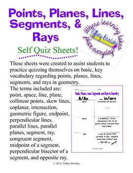 Points, Planes, Lines, Segments, and Rays Self Quiz Sheets