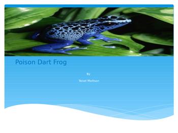 Poison Dart Frog Power Point