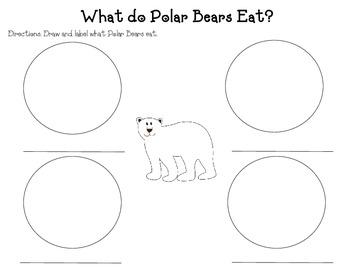 Polar Bear Literacy Unit