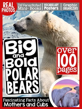 Polar Bears {A Complete Nonfiction Resource!}