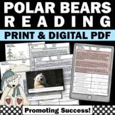 Polar Bears Winter Unit Nonfiction Reading Comprehension W