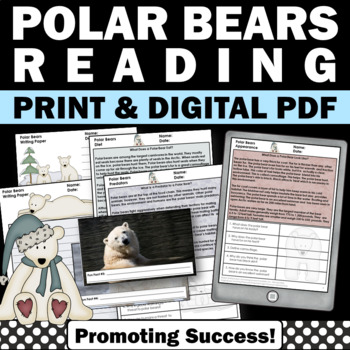 Polar Bears Worksheets NO PREP Nonfiction Reading Comprehe
