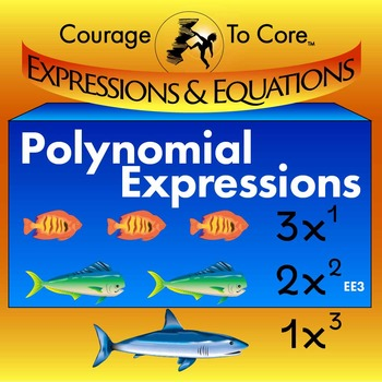 Polynomial Expressions (EE3): HSA.APR.A.1