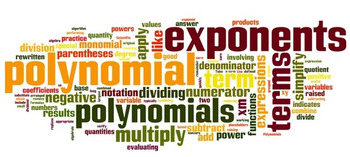 Polynomials Mini Bundle
