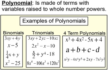 Polynomials Unit Bundle -20 Assignments, 4 References and