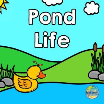 Pond Life File Folder Game