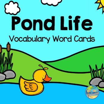 Pond Life Vocabulary Word Cards