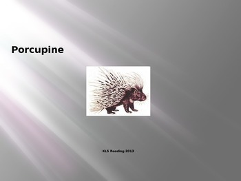 Porcupine - Power Point Information Facts Pictures