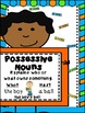 Possessive Nouns Anchor Chart