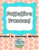 Possessive Pronouns Pack