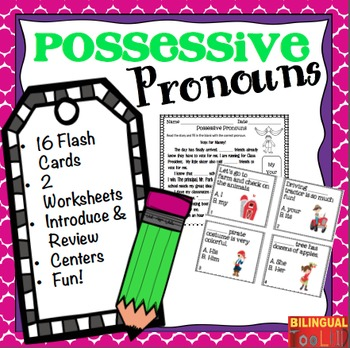 Possessive Pronouns Task Cards Grades 2-4