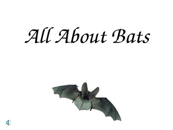 Power Point Presentation: All About Bats!