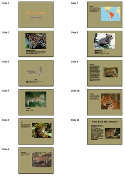 PowerPoint A: Endangered Animals Technology Lesson Plan &