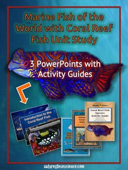 3 PowerPoints & 3 Study Guides Unit Study: Marine Fish of