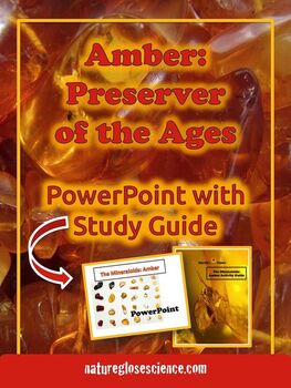 PowerPoint & Study Guide - Rocks and Minerals - The Minera