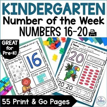 Pre-Kindergarten Math Numbers 16-20 Number of the Week Zoo Theme