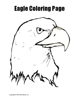 Printable Eagle Coloring Worksheet Pages