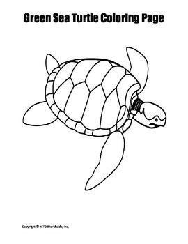 Printable Green Sea Turtle Coloring Page Worksheet