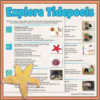 Explore the Seashore! 1 Complete Preschool Curriculum Less